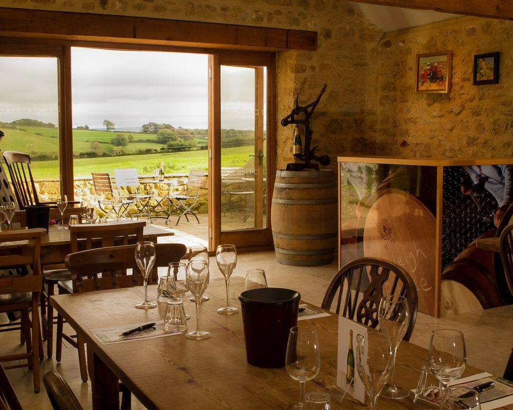 Vineyard tours near Mapperton House